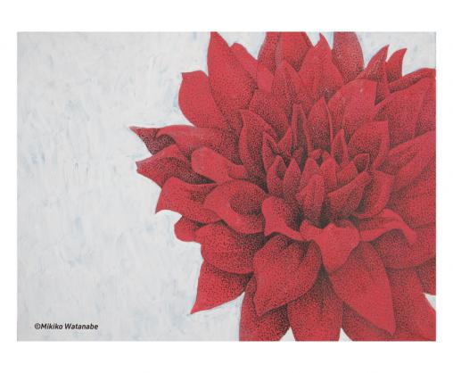 ダリヤの花のイラスト