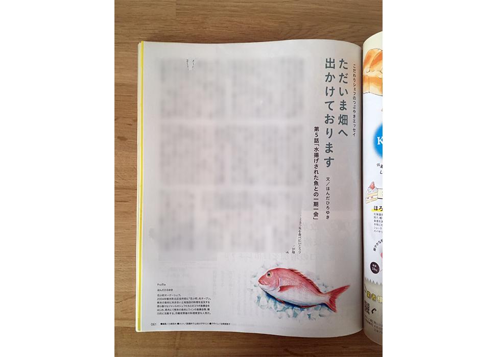 タンクマ誌面の鯛のイラスト