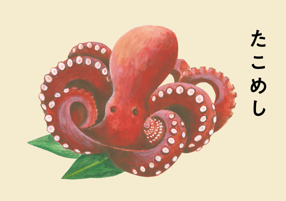 蛸のイラスト